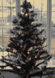 Xmas treePc270143